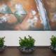 Zamia Plant Grouping