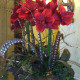 Silk Amaryllis Arrangement