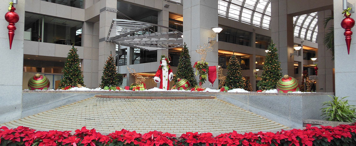 Holiday Display by Landscape and Floral Group